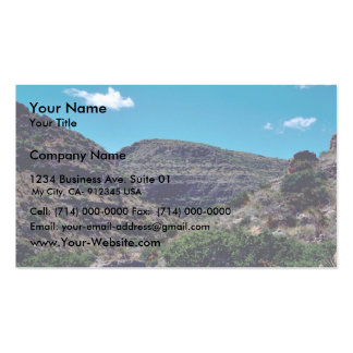 Rattlesnake canyon Double-Sided standard business cards (Pack of 100)