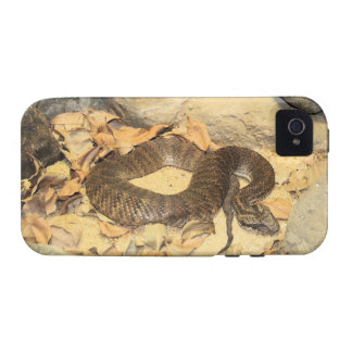 Rattlesnake Case-Mate iPhone 4 Covers