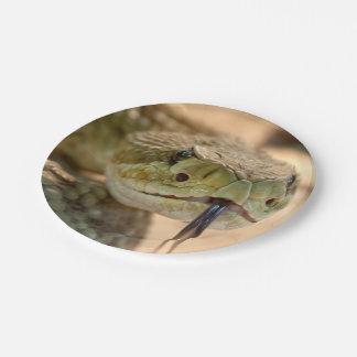 Rattlesnake Closeup Photo Paper Plate
