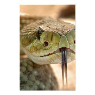 Rattlesnake Closeup Photo Stationery