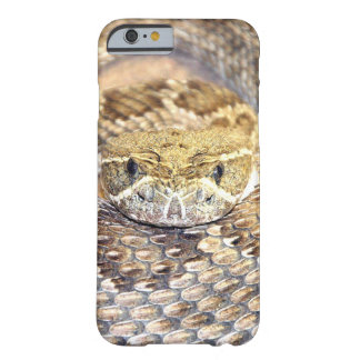 Rattlesnake face barely there iPhone 6 case