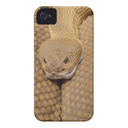 Rattlesnake Head casematecase