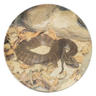 Rattlesnake Melamine Plate