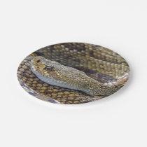 Rattlesnake photo paper plate