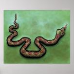 Rattlesnake poster