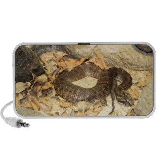 Rattlesnake Notebook Speaker