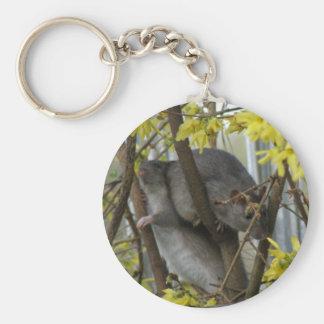 Ratty cuddles Keychain
