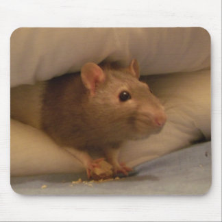 ratty mouse pad