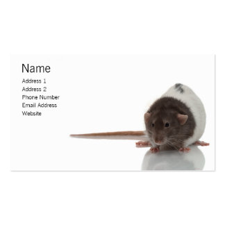 Ratty Profile Card Business Card Templates