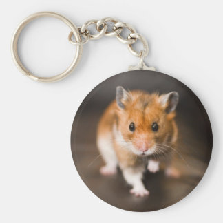 Ratty the hamster basic round button keychain