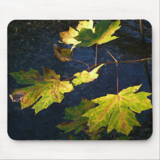 Ravaged Golden Autumn Leaves Mouse Pad