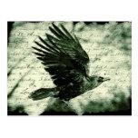 Raven 9 postcard