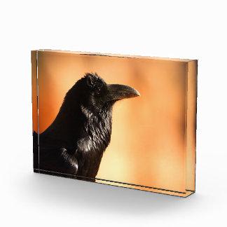 raven acrylic award