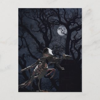Raven and Rat Skeleton in Moonlight Postcard