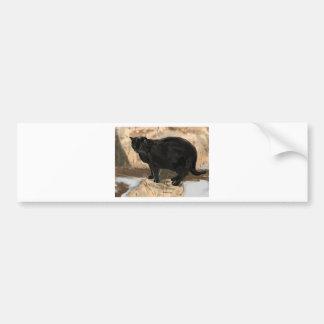 Raven Car Bumper Sticker