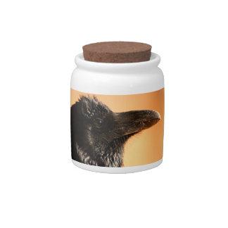 raven candy jar