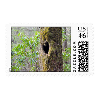 Raven Cliffs Heart Hole Tree Georgia Stamps