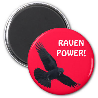 RAVEN & CROW Designs New! 2 Inch Round Magnet