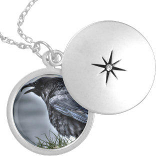Raven Crow Wildlife Bird Raven-Lover Silver Plated Necklace
