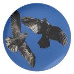 raven dance party plates
