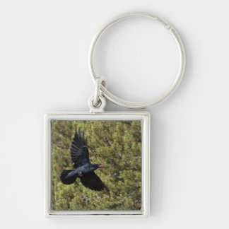 Raven Delivery Keychain
