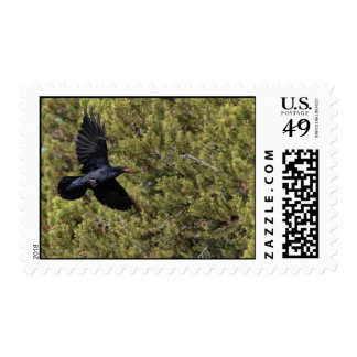 Raven Delivery Postage Stamp