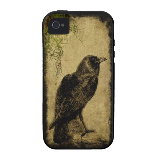 Raven & Ferns- Iphone 4/4s case- Take 2 Vibe iPhone 4 Case