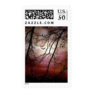 Raven Flies at Sundown in Fall Stamp