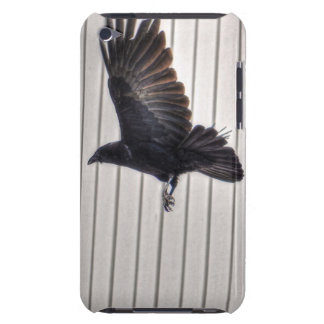 Raven Flying by House Wildlife Photographic Art Barely There iPod Case