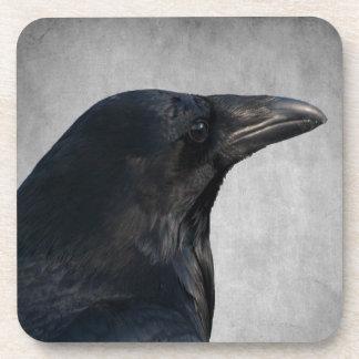 Raven Glamour Shot Beverage Coaster
