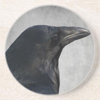 Raven Glamour Shot Coaster