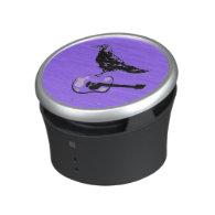 raven guitar song speaker
