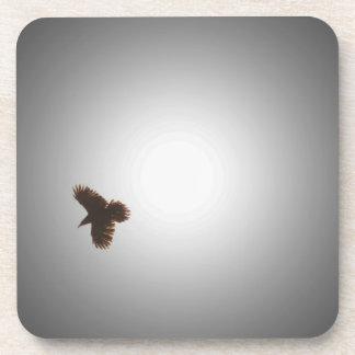 Raven in Flight Drink Coaster