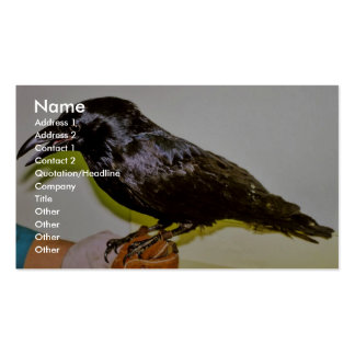 Raven in Hand Business Card