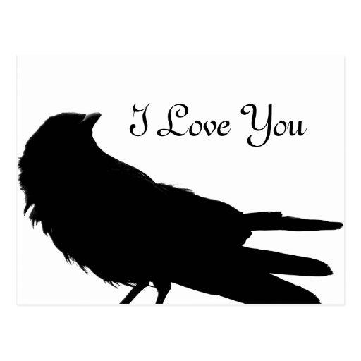 Raven of Love_ Postcard