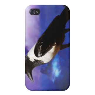 Raven on a fence iPhone 4 cover