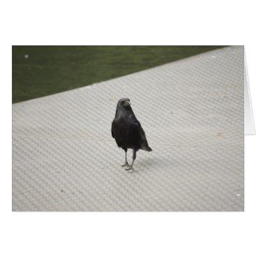 Halloween Themed raven on metall card
