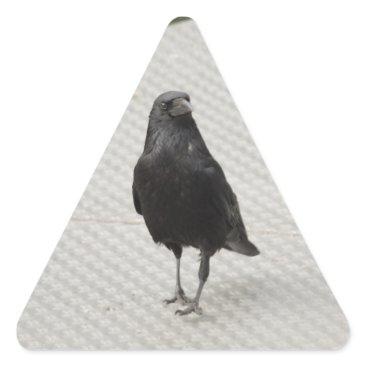 Halloween Themed raven on metall triangle sticker