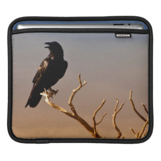 Raven on Sunlit Tree Branches Grand Canyon Sleeves For iPads