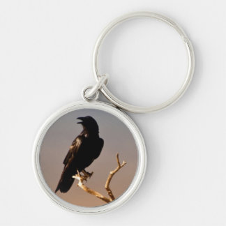 Raven on Sunlit Tree Branches, Grand Canyon Keychain