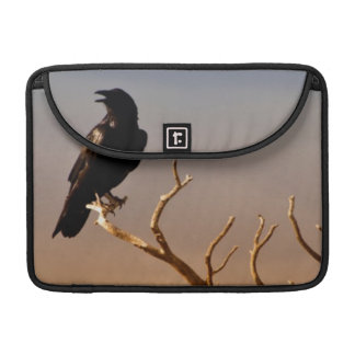 Raven on Sunlit Tree Branches, Grand Canyon Sleeve For MacBooks