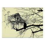 Raven on the Tree, House in Ruins Poster