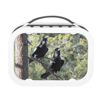 Raven Pair in the Mountain Yubo Lunchbox