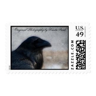 Raven Portrait Postage Stamp