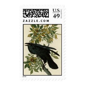 Raven Postage Stamps