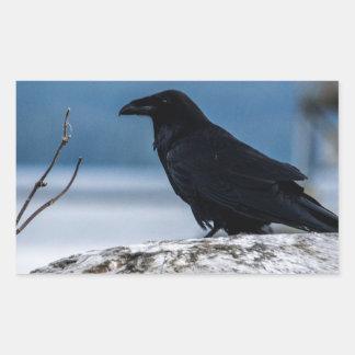 Raven Reflection collection Rectangular Sticker