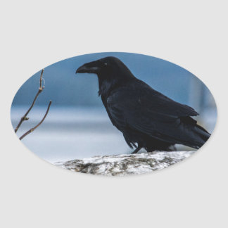 Raven Reflection collection Oval Sticker