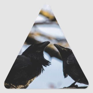 Raven Soul Mates a gift collection Triangle Sticker