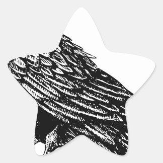 Raven Star Sticker