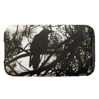 Raven Steampunk Tough iPhone 3 Covers